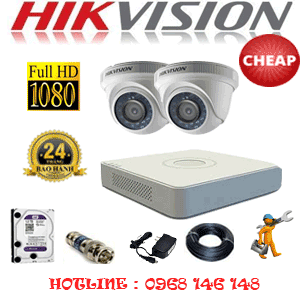 TRỌN BỘ 2 CAMERA CHEAP HIKVISION 2.0MP (HIK-22300C)-HIK-22300C