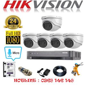 HIK-252300
