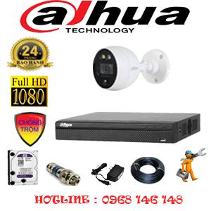 Lắp Đặt Trọn Bộ 1 Camera Dahua 2.0Mp (Dah-211200)-DAH-211200