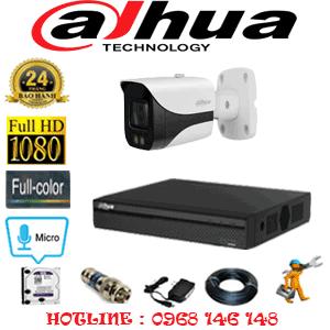 Lắp Đặt Trọn Bộ 1 Camera Dahua 2.0Mp (Dah-21800)-DAH-21800