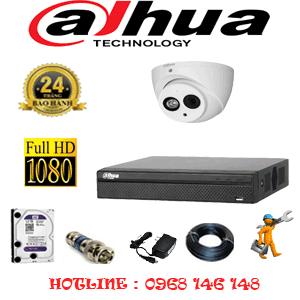 Lắp Đặt Trọn Bộ 1 Camera Dahua 2.0Mp (Dah-211900)-DAH-211900