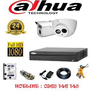 Lắp Đặt Trọn Bộ 2 Camera Dahua 2.0Mp (Dah-2119120)-DAH-2119120