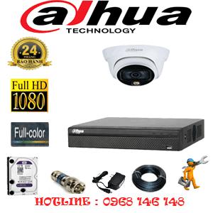 Lắp Đặt Trọn Bộ 1 Camera Dahua 2.0Mp (Dah-212100)-DAH-212100