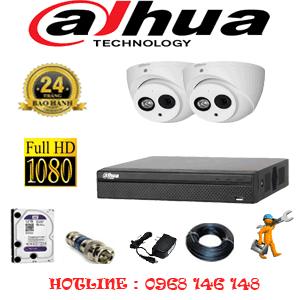 Lắp Đặt Trọn Bộ 2 Camera Dahua 2.0Mp (Dah-221900)-DAH-221900