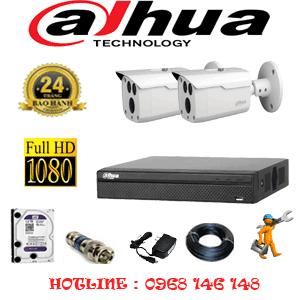 Lắp Đặt Trọn Bộ 2 Camera Dahua 2.0Mp (Dah-222000)-DAH-222000
