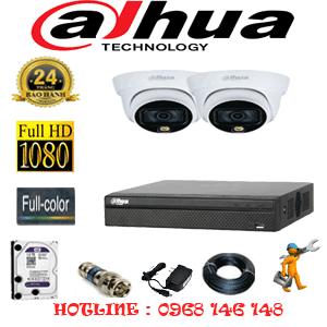 Lắp Đặt Trọn Bộ 2 Camera Dahua 2.0Mp (Dah-222100)-DAH-222100