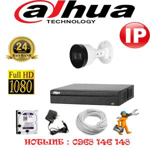 Lắp Đặt Trọn Bộ 1 Camera Ip Dahua 2.0Mp (Dah-214600)-DAH-214600