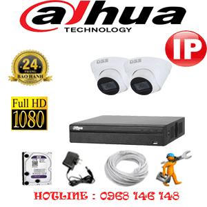 Lắp Đặt Trọn Bộ 2 Camera Ip Dahua 2.0Mp (Dah-224500)-DAH-224500