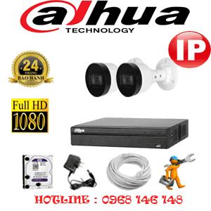 Lắp Đặt Trọn Bộ 2 Camera Ip Dahua 2.0Mp (Dah-224600)-DAH-224600