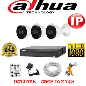 Lắp Đặt Trọn Bộ 3 Camera Ip Dahua 2.0Mp (Dah-234600)-DAH-234600
