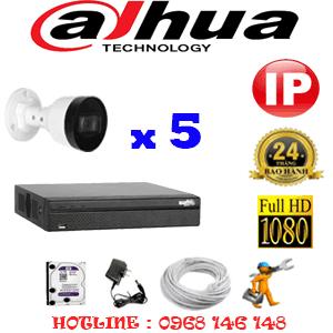 Lắp Đặt Trọn Bộ 5 Camera Ip Dahua 2.0Mp (Dah-254600)-DAH-254600
