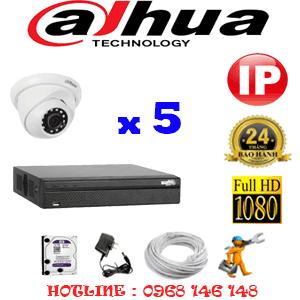 Lắp Đặt Trọn Bộ 5 Camera Ip Dahua 2.0Mp (Dah-254900)-DAH-254900