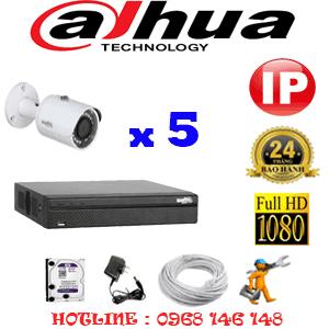 Lắp Đặt Trọn Bộ 5 Camera Ip Dahua 2.0Mp (Dah-255000)-DAH-255000