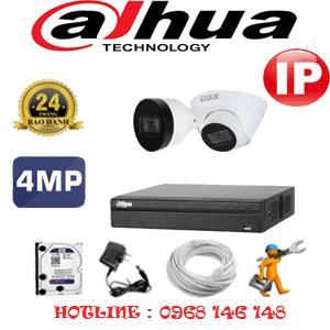 Lắp Đặt Trọn Bộ 2 Camera Ip Dahua 4.0Mp (Dah-4147148)-DAH-4147148