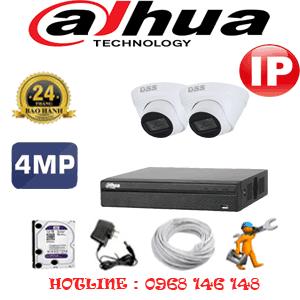 Lắp Đặt Trọn Bộ 2 Camera Ip Dahua 4.0Mp (Dah-424700)-DAH-424700