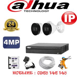 Lắp Đặt Trọn Bộ 2 Camera Ip Dahua 4.0Mp (Dah-424800)-DAH-424800
