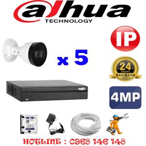 Lắp Đặt Trọn Bộ 5 Camera Ip Dahua 4.0Mp (Dah-454800)-DAH-454800