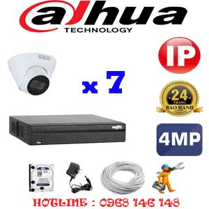 Lắp Đặt Trọn Bộ 7 Camera Ip Dahua 4.0Mp (Dah-474700)-DAH-474700