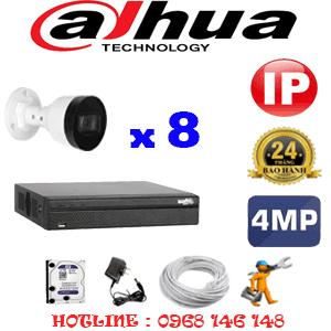 Lắp Đặt Trọn Bộ 8 Camera Ip Dahua 4.0Mp (Dah-484800)-DAH-484800