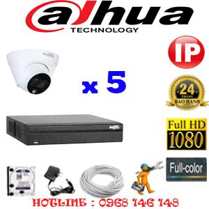 Lắp Đặt Trọn Bộ 5 Camera Ip Dahua 2.0Mp (Dah-255100)-DAH-255100