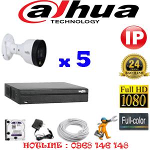 Lắp Đặt Trọn Bộ 5 Camera Ip Dahua 2.0Mp (Dah-255200)-DAH-255200