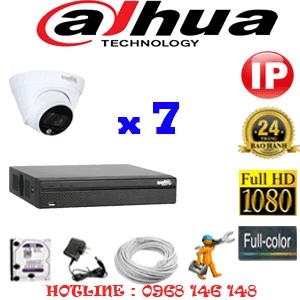 Lắp Đặt Trọn Bộ 7 Camera Ip Dahua 2.0Mp (Dah-275100)-DAH-275100